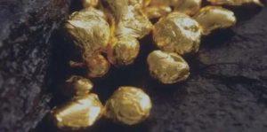 Закон о добычи золота частными лицами