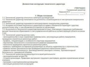 Должностная инструкция начальника отдела технической поддержки
