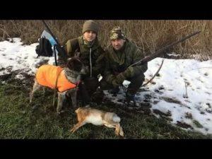 Открытие охоты на зайца 2021 год оренбург
