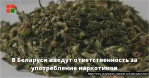 Наказание за употребления гашиша россия