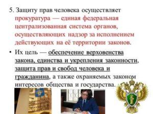Защита прав человека в россии примеры