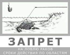 Когда разрешается лов раков в волгоградской области