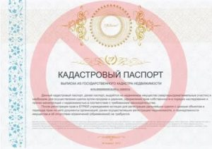 Отменили ли кадастровые паспорта