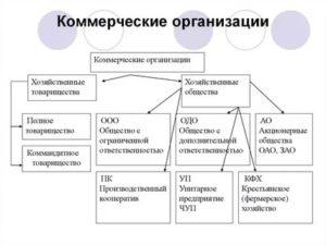 Какие предприятия относятся к коммерческим организациям